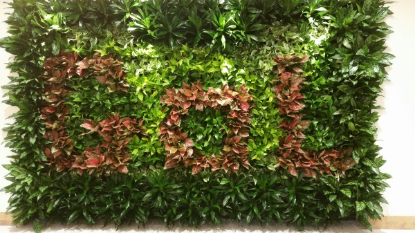 Living Plant Wall with the Letters GOL