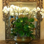 White flowers in a gold vase